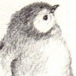 Profile photo of Pewsel